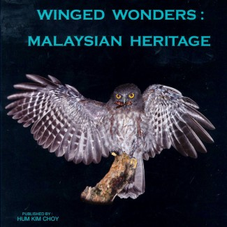 Winged Wonders: Malaysian Heritage