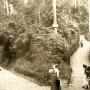 funicular-3