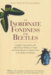 beetles-1