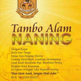 naning_cvr