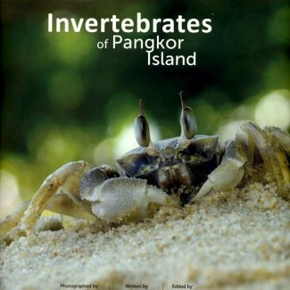 invertebrates of pangkor